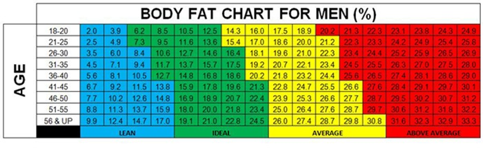 men s body fat chart